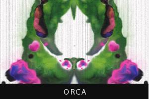 ORCA(オルカ)